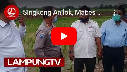 Singkong Anjlok, Mabes Polri Terjun ke Lampung Tengah